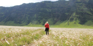 open trip overland jatim