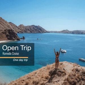 Open trip Komodo Speedboat 1 hari