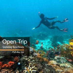 Open trip Snorkeling Nusa Penida
