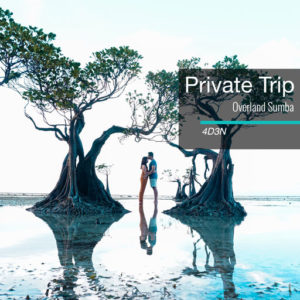 private trip sumba 4d3n
